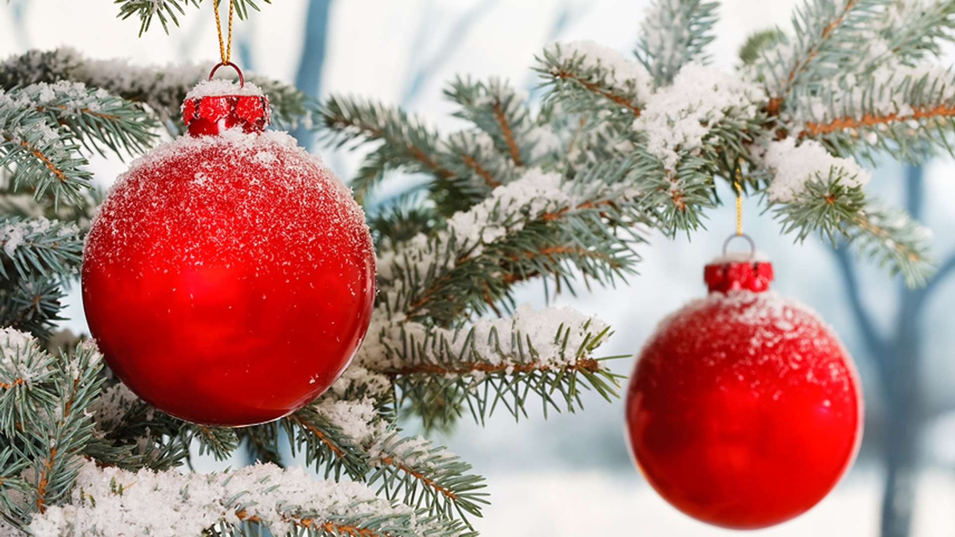 Christmas in Muskoka Package