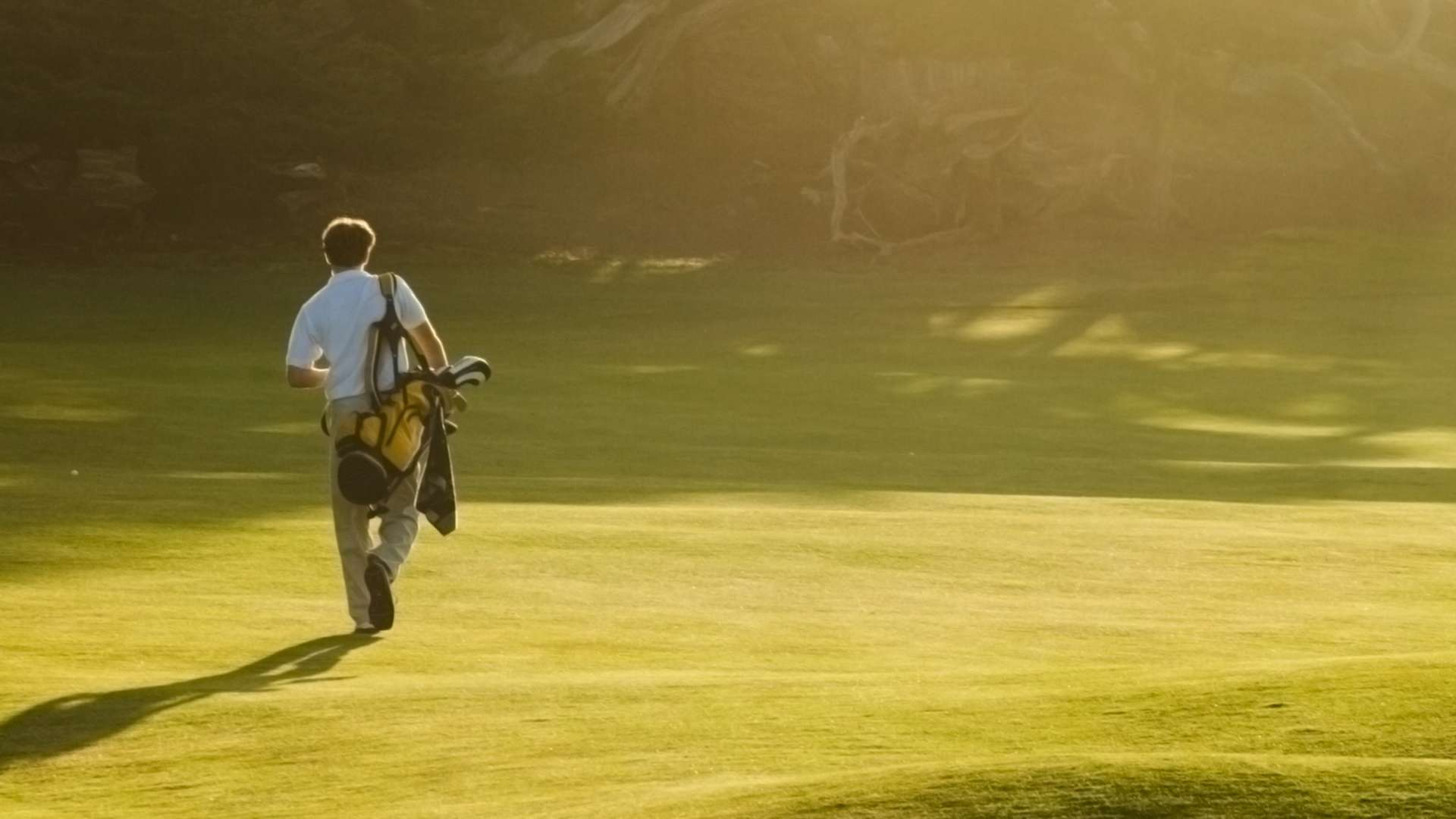 Muskoka's best golf memberships