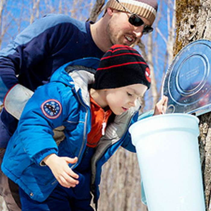 Muskoka Maple Festival Rate