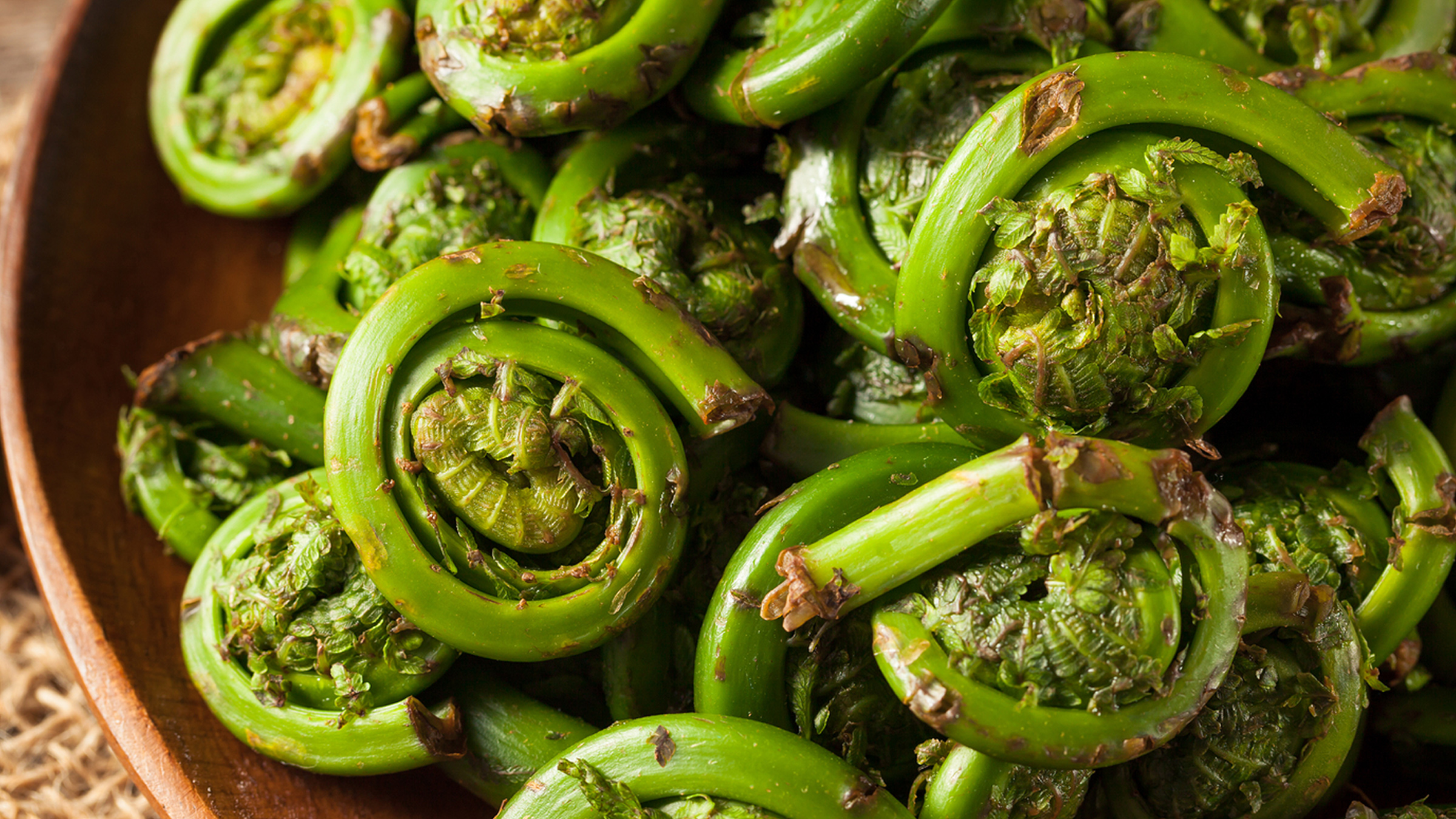 What the Heck is a Fiddlehead?