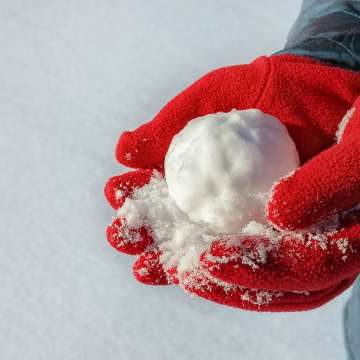 How To Make The Perfect Snowball